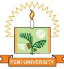 Feni University